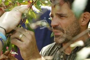 66966_01-autumn-olive-foraging
