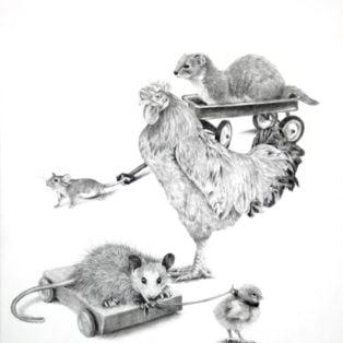 Ellen Cornett-The Possum Chased the Weasel