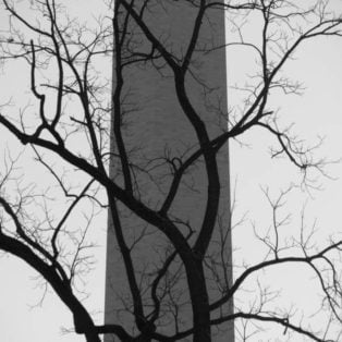 Honorable Mention: Against the Washington Monument by Susan Sanders