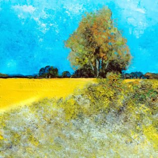 Yellow Field by Alan Braley