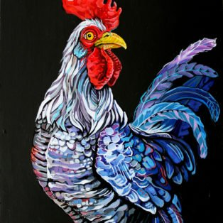 colorful rooster - dana ellyn