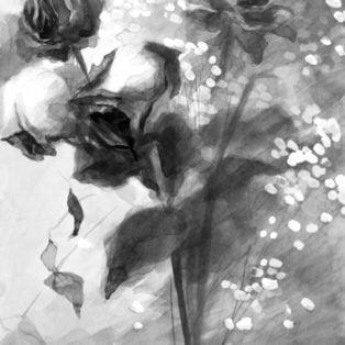 Cut Roses-CinCin Fang-Ink-16inx21in-$250 - Hui Fang