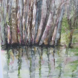 _Everglades_ Tara Hamilton Watercolor 11_x14_ $200 - Tara Hamilton