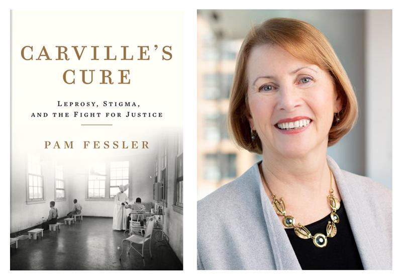 Pam Fessler's book Carville's Cure