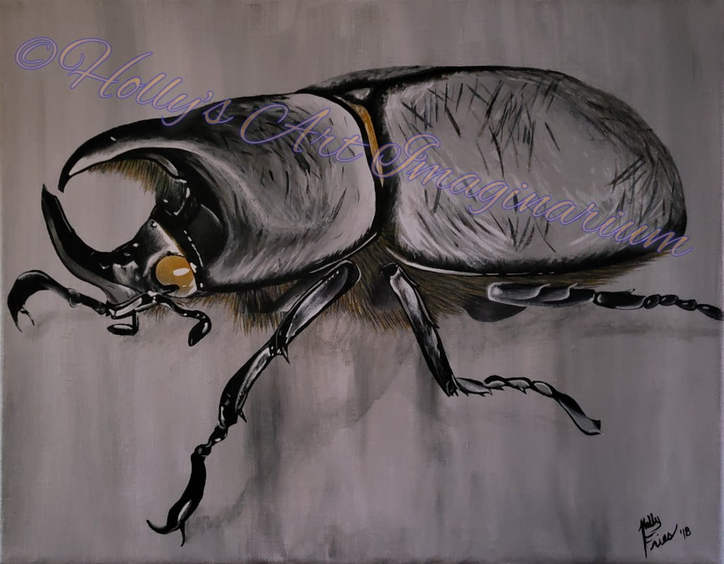 Rhinoceros Beetle with scar marks