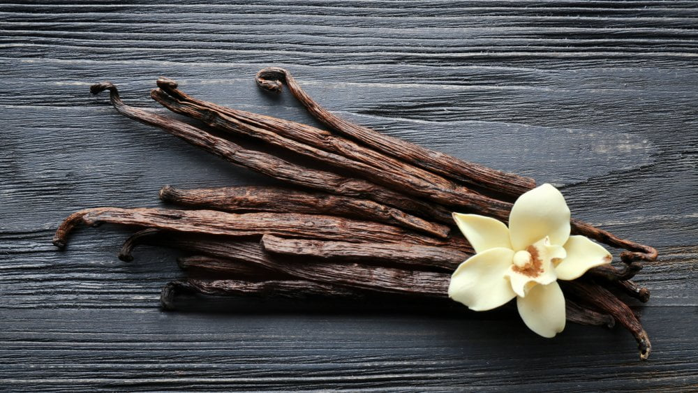 Vanilla pods with flower