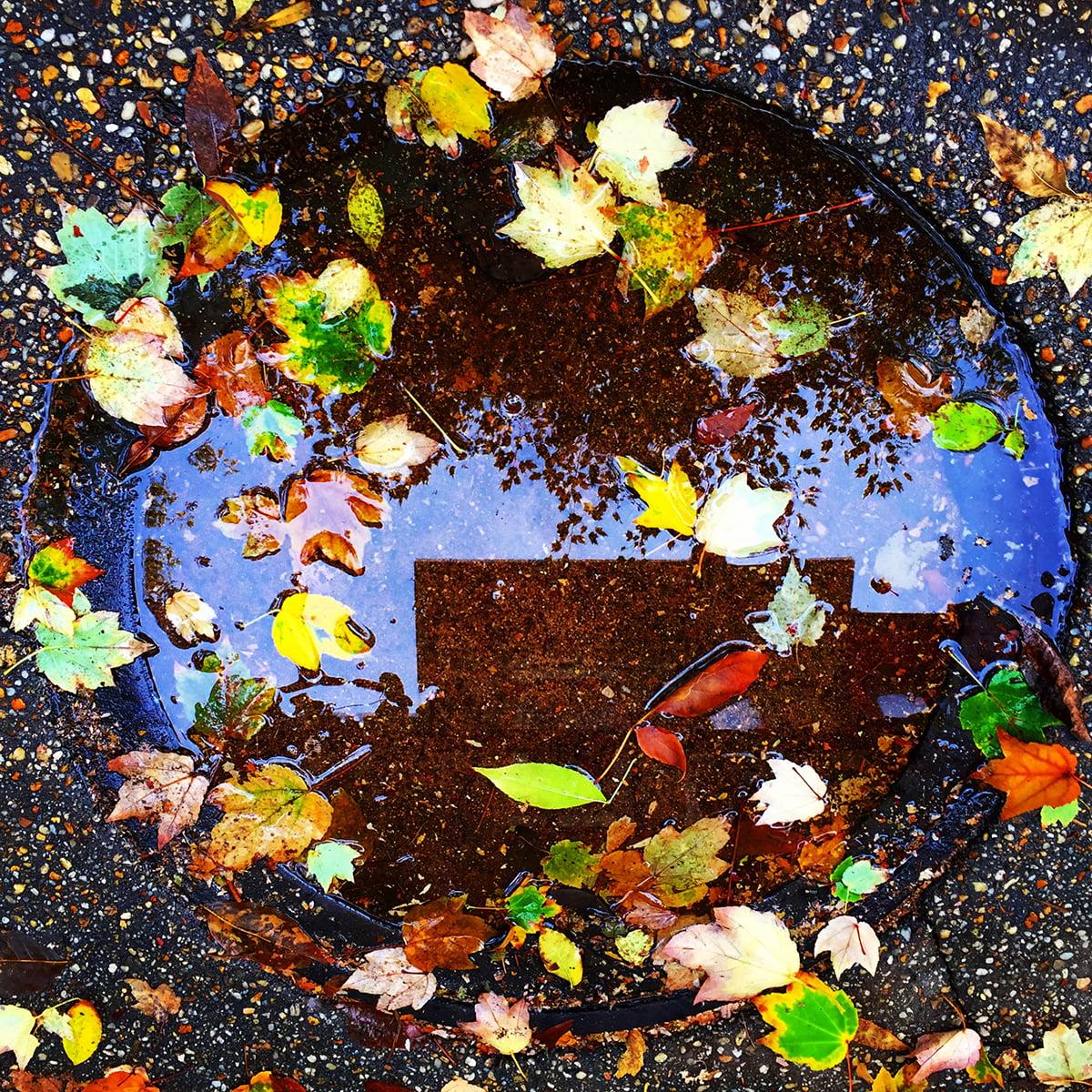 Fall Manhole Reflection