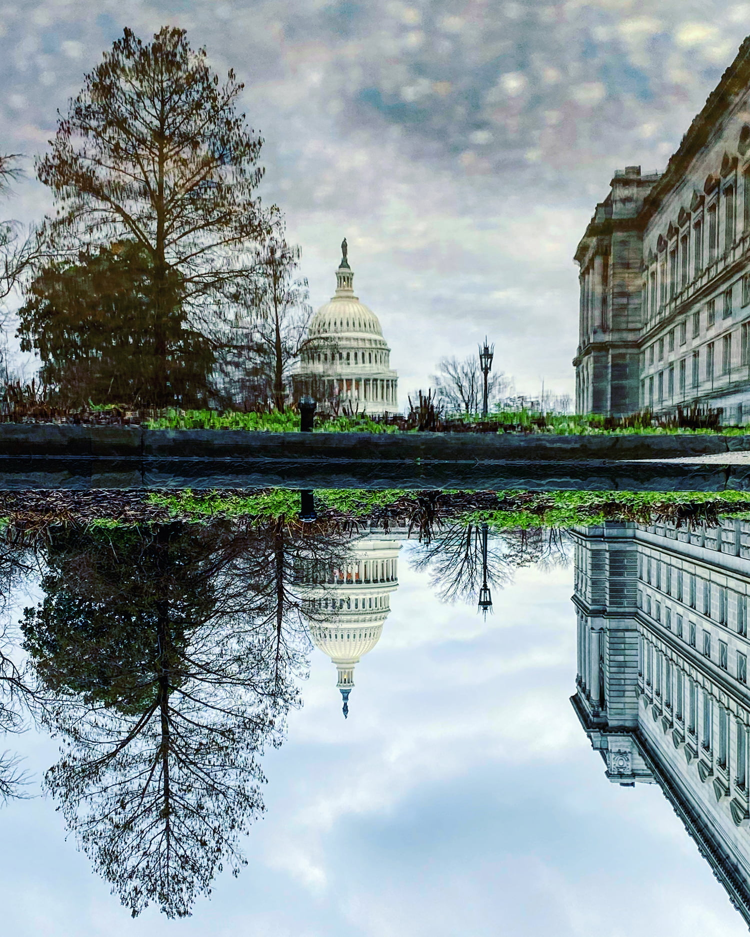 Library & Capitol Reflection